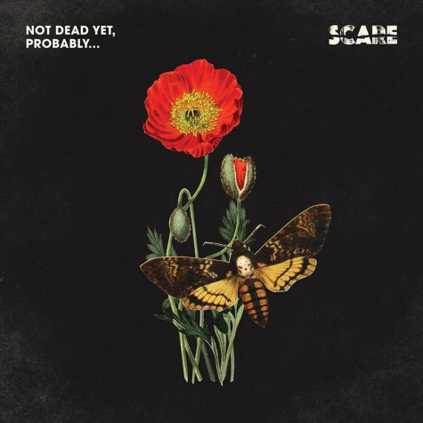 Scare - Not dead yet, probably​ LP