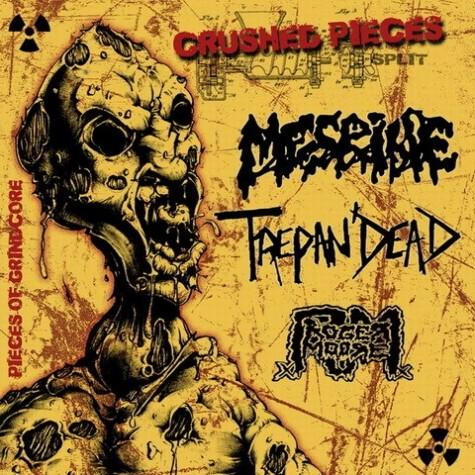 Mesrine / Roger Moore  / Trepan'Dead - Crushed Pieces split CD